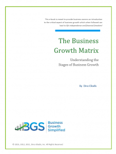 business growth matrix cover